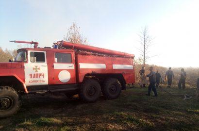 7 листопада о 09:00 до Служби порятунку у Сновському  районі надійшло повідомлення про загоряння торфовища біля села Старі Боровичі