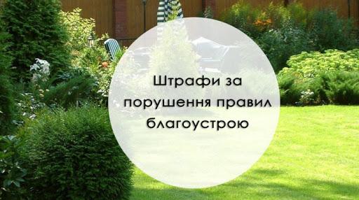 Житель Гвоздиківки заплатив штраф за порушення правил благоустрою